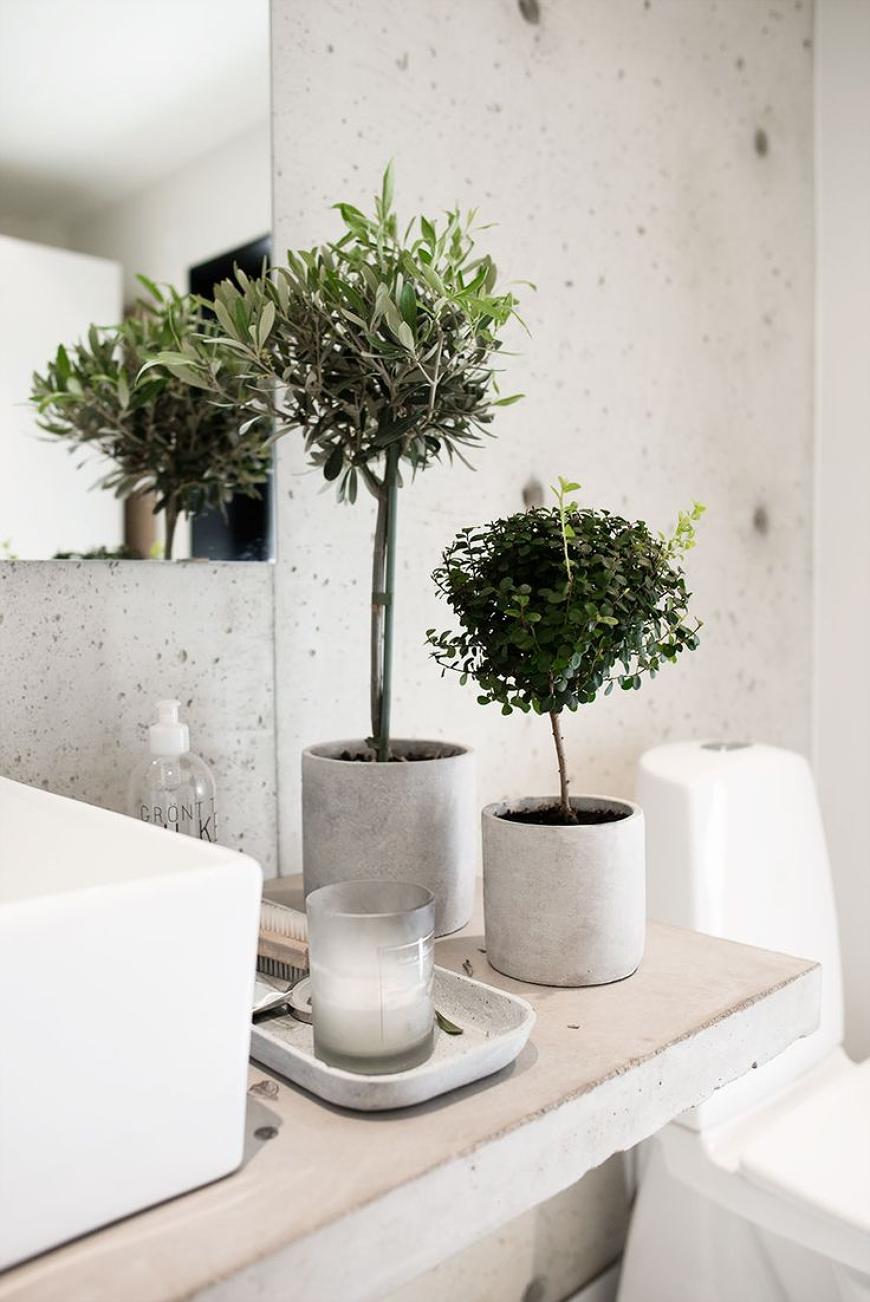 piante per arredare il bagno: 80 idee - Idee Per Arredare Il Bagno