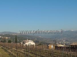 1229 - San Briccio