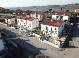 1231 - San Briccio