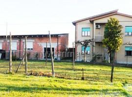 542 - Nogara