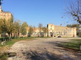 513 - Castel d'Ario
