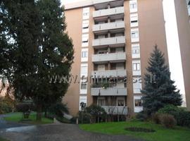 314 - Monza Cederna