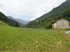 1093 - Selva di Progno