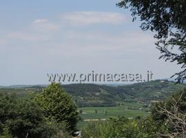 1485 - Lavagno