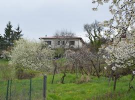 1144 - Tregnago