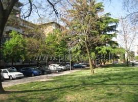 1768 - Borgo Trieste