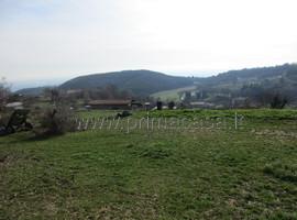 003 - Montecchio