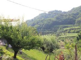 840 - San Giovanni Ilarione