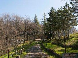 697 - San Lazzaro di Savena