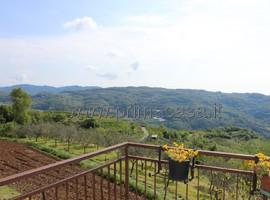 921 - San Giovanni Ilarione