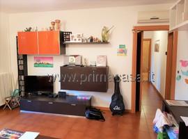 5403 - Mogliano Veneto